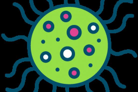 Healthwatch COVID 19 icon